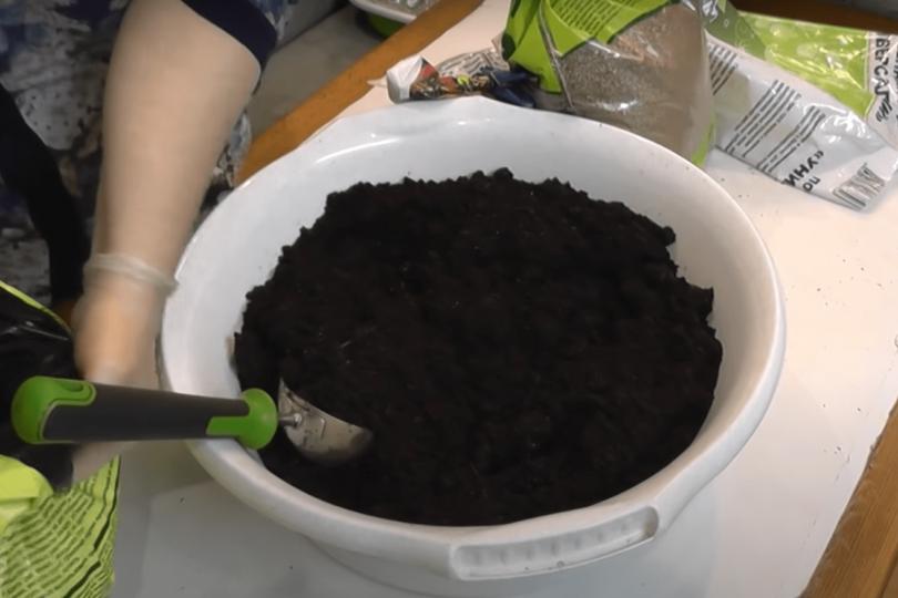 Почва для гибискуса фото